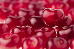 Fond de cerise avec la cerise sous la forme de coeur Cerises riches fraîches mûres Photos stock