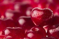 Fond de cerise avec la cerise sous la forme de coeur Cerises riches fraîches mûres avec des gouttes de l'eau Images stock