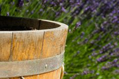 Fond de champ Baril et lavande en bois image stock