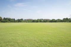 Fond de champ de gazon Photos stock