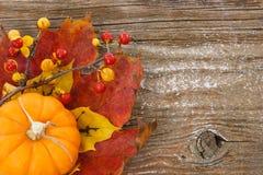 Fond de charme d'automne avec l'espace de copie Photo stock
