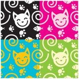 Fond de chat Photographie stock libre de droits