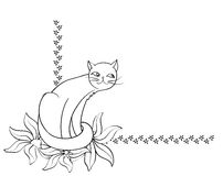 Fond de chat Photo libre de droits