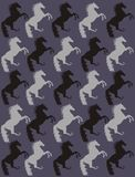 Fond de chevaux Image stock