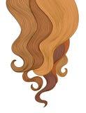 Fond de cheveux Conception de cadre de salon de coiffure de couleur Images stock
