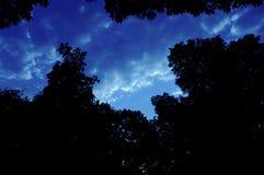 Fond de ciel de nature photo libre de droits