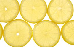 Fond de citron Image libre de droits