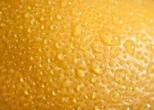 Fond de citron. Photographie stock libre de droits