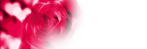 Fond de coeurs d'amour de valentines Photographie stock