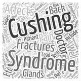 Fond de concept de nuage de mot de douleurs de dos et de Hypercortisolism Images stock
