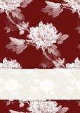 Fond de configuration de Rose Photographie stock libre de droits