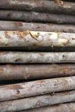 Fond de configuration en bois de chêne Photos libres de droits