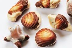 Fond de coquillages de chocolat Images libres de droits