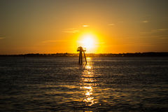 Fond de coucher du soleil de forêt vierge Photographie stock libre de droits