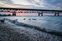 Fond de coucher du soleil du Michigan de pont de Mackinaw Photo libre de droits
