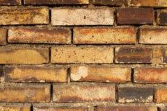 Fond de couches de brique Image libre de droits