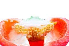 Fond de coupure de poivron rouge Photographie stock