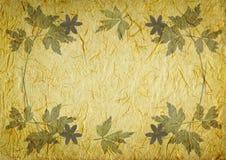Fond de cru avec la trame florale Image stock