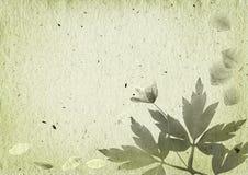 Fond de cru avec les éléments floraux Photographie stock libre de droits