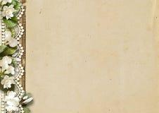 Fond de cru avec les fleurs et le lacet Fleur tendre Photos stock