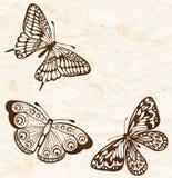 Fond de cru. Vieux papier chiffonné avec des papillons de vol dans le coin. Image libre de droits
