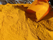 Fond de curry de safran des indes et un garant photographie stock libre de droits