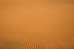 Fond de désert texturisé Images stock