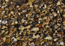 Fond de des pierres de mer Photo libre de droits