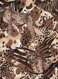 Fond de faune de l'Afrique. Photographie stock