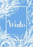 Fond de fenêtre congelé par hiver illustration stock