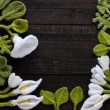Fond de feuille verte tricotée et de fleur blanche photographie stock libre de droits