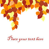 Fond de feuilles d'automne avec l'endroit pour votre texte Image stock