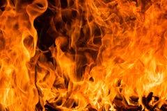 Fond de flambage de flamme du feu photographie stock libre de droits