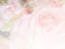 Fond 30 de fleur Image libre de droits