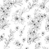 Fond de fleur Couleur noire et blanche d'illustration de vecteur de dessin de main d'ensemble illustration stock