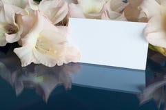 Fond de fleur dans des tons en pastel Fleurs de glaïeul et carte blanche avec l'espace libre pour le texte Image stock