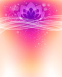 Fond de fleur de Lotus Photos libres de droits