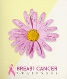 Fond de fleur de rose de conscience de cancer du sein Images stock
