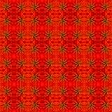 Fond de fleur de Zinnias Image stock
