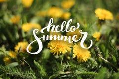 Fond de fleur et bonjour lettrage d'été Photo libre de droits