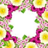 Fond de fleur fraîche Images stock
