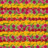 Fond de fleur de Zinnias Image libre de droits