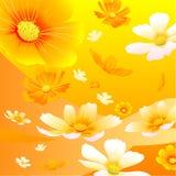 Fond de fleurs Photo libre de droits