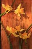 Fond de fleurs avec le bouquet de jonquilles sur la table en bois photographie stock libre de droits