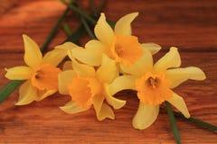 Fond de fleurs avec le bouquet de jonquilles sur la table en bois photo stock