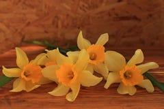 Fond de fleurs avec le bouquet de jonquilles sur la table en bois photographie stock