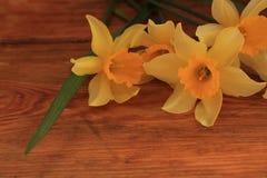 Fond de fleurs avec le bouquet de jonquilles sur la table en bois photo libre de droits