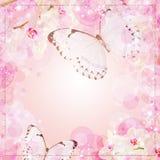 Fond de fleurs de guindineaux et d'orchidées Image stock