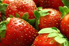 Fond de fraise Photo stock