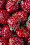 Fond de fraise Photos libres de droits